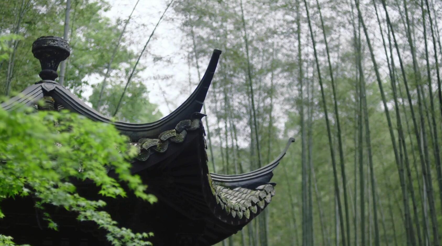湖州-长兴贡茶院